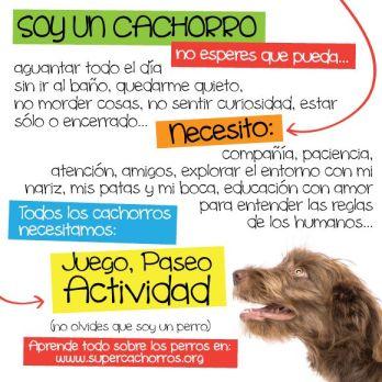 soyuncachorro-fbpost