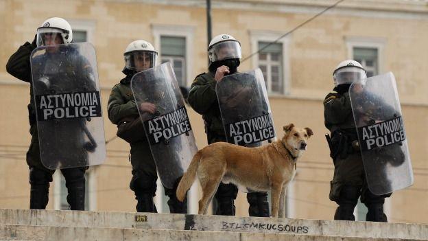 lukanikos-perro-grecia-protestas