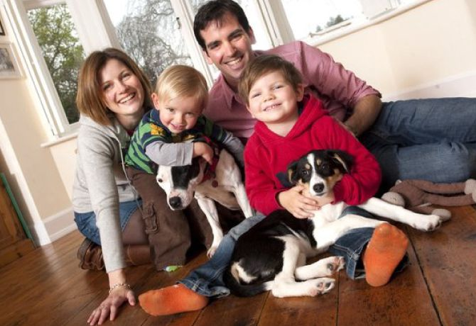Consejos para fotos familiares con perro