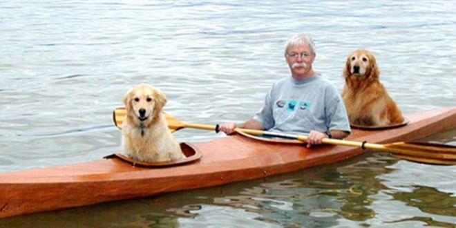 Kayak Para Llevar A Sus Perros A La Aventura
