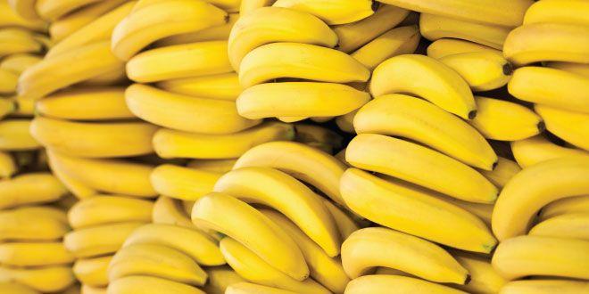 Plátanos para compartir con tu perro