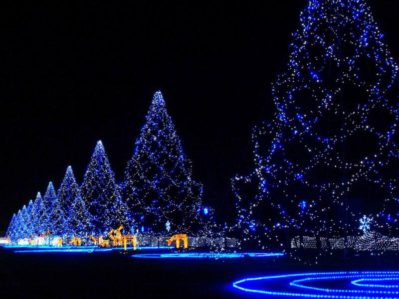 Beautiful Merry Christmas Backgrounds