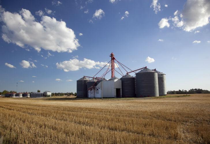 Agroindustria detectó irregularidades en acopio cordobés