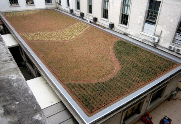 Techos verdes y jardines verticales para caba supercampo Techos verdes y jardines verticales