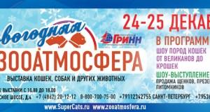 Новогодняя Зооатмосфера -ACS международная выставка кошек, SuperCats