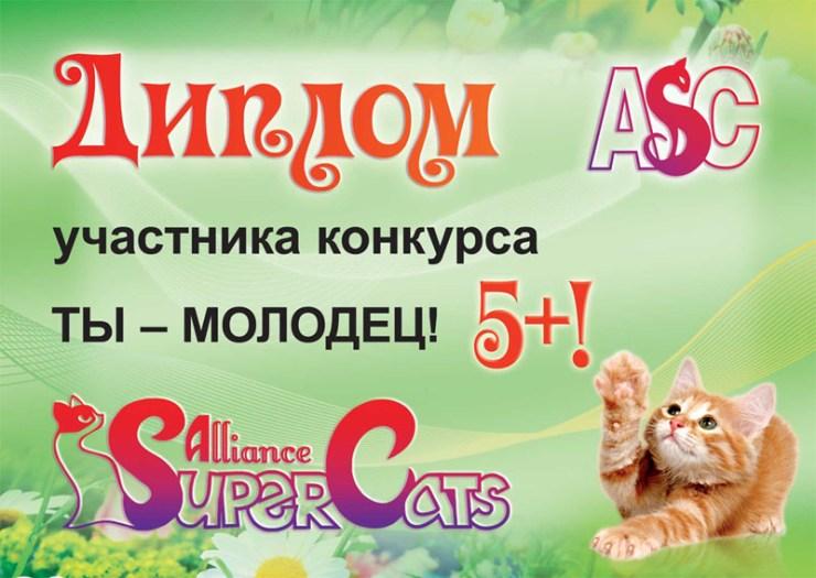 Диплом ребенку на конкурсе плюшевых кошек