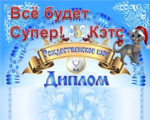 ASC выставка кошек Сибирский Новый год