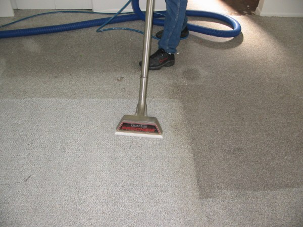 Why You Need Professional Carpet Cleaning Services ...