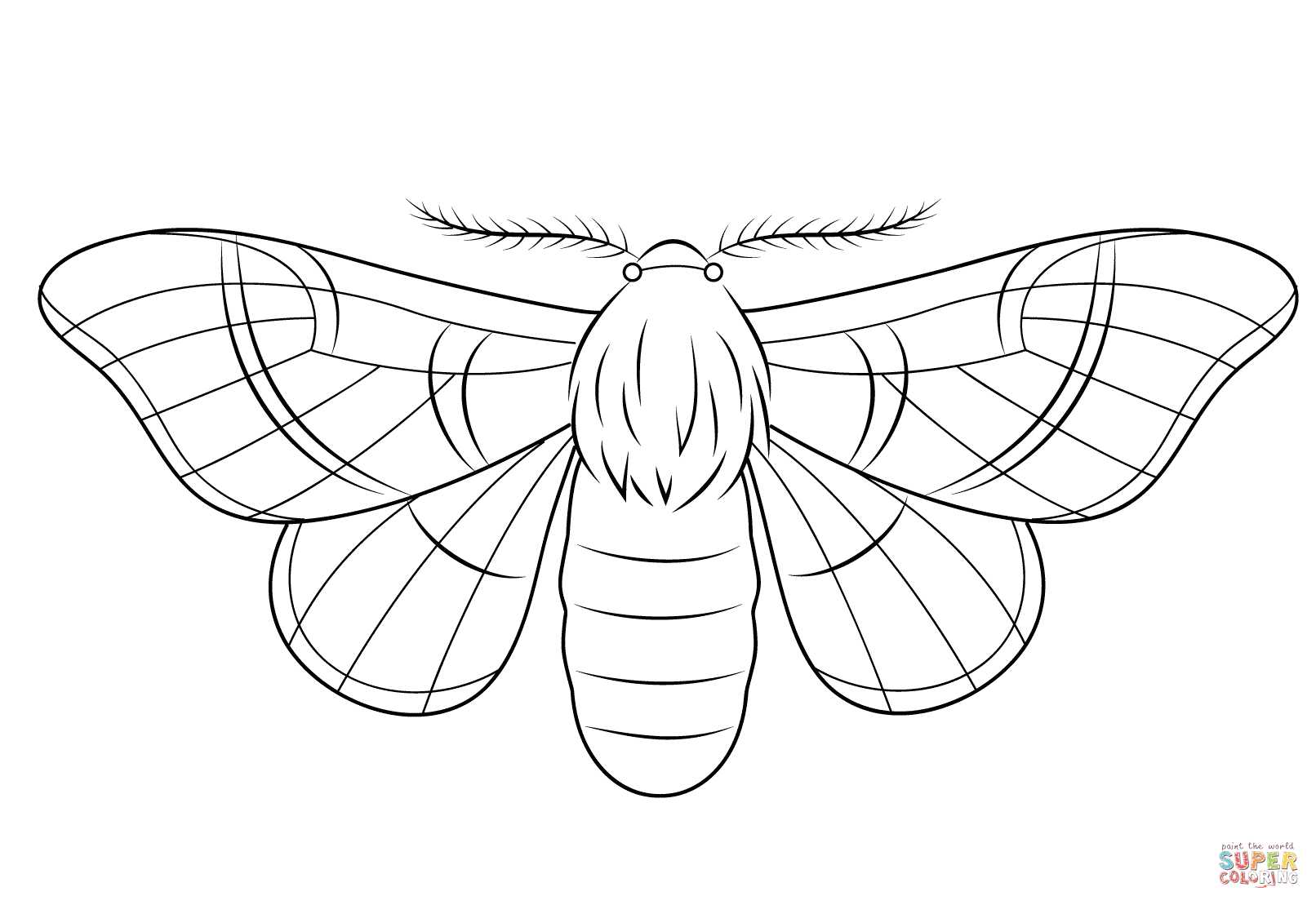 Silkmoth Coloring Page