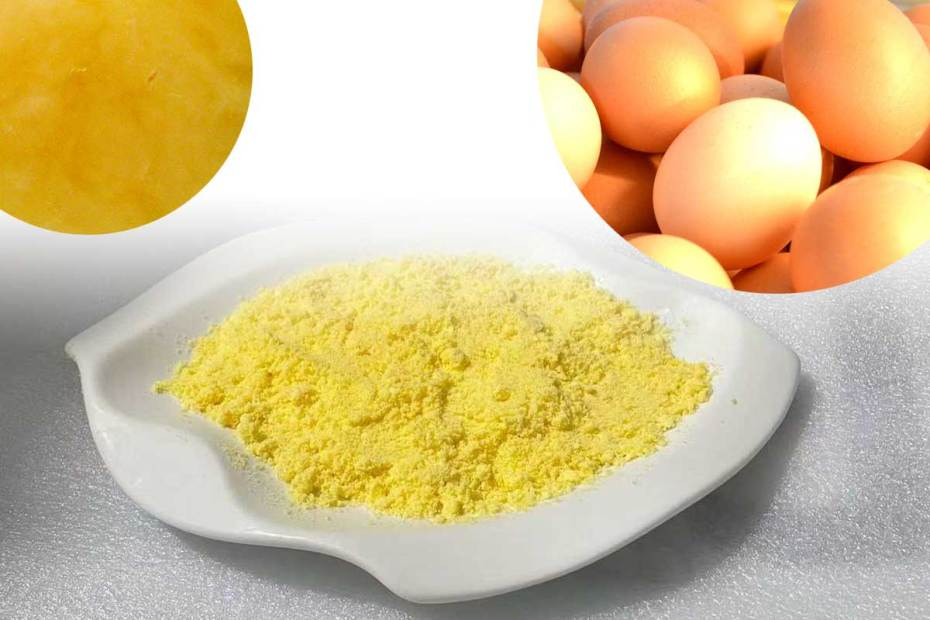 supercritical CO2 extraction methods for egg yolk lecithin