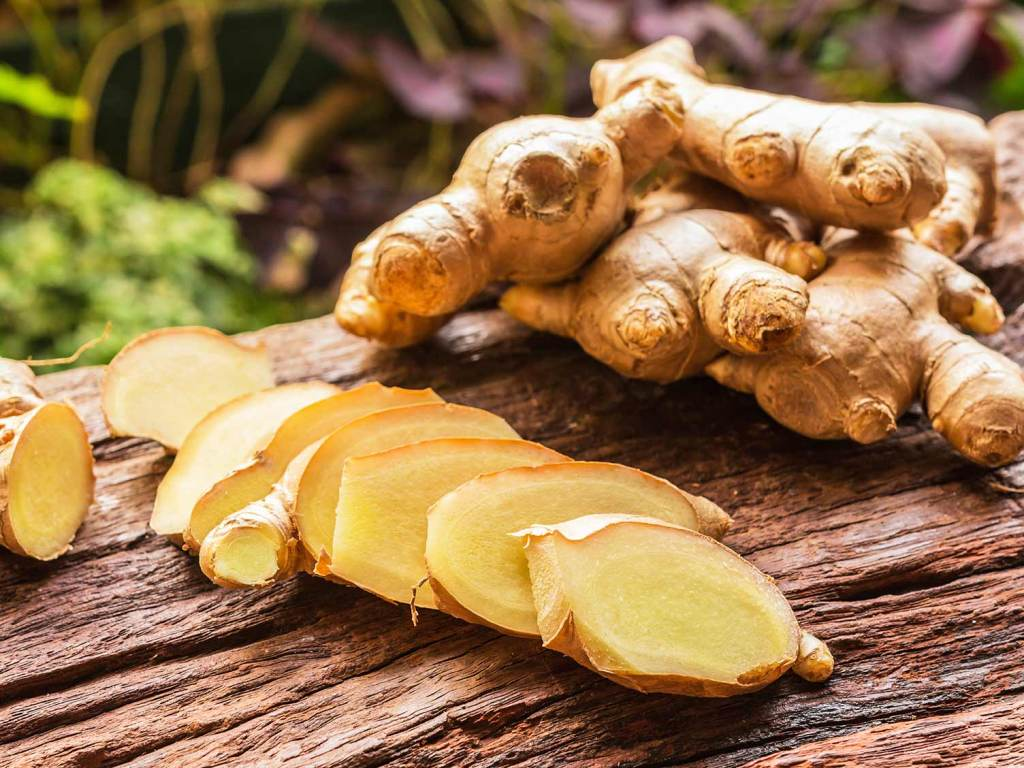 supercritical CO2 extraction of ginger oil