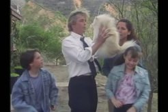 Hahaha! That's not a dog! That's Gary Busey!
