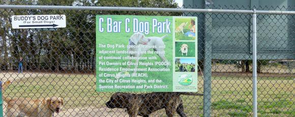 dog-park-aggression