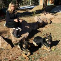 DOG TRAINING GRASS VALLEY CA