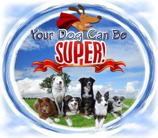 Superdog sacramento facility