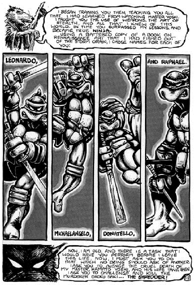 Introducing the TMNT!