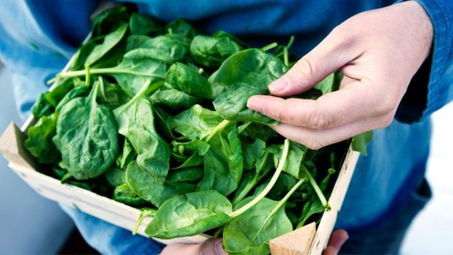 spinach and cancer