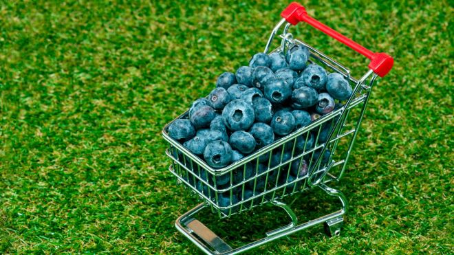 how to buy blueberries