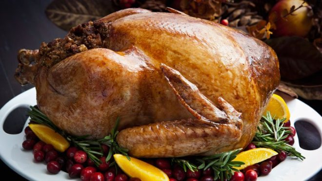 turkey and immune system