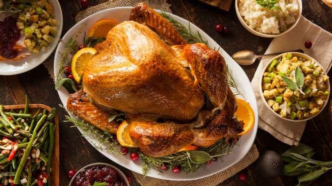protein in turkey
