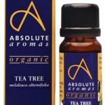 Absolute Aromas Organic Tea Tree 10ml