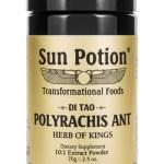 Sun Potion Polyrachis Ant 70 Gram