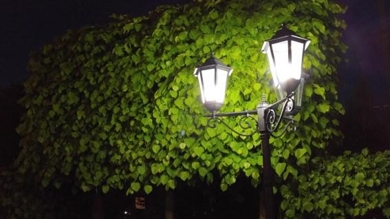LG G4 Ночная съемка (фонарь)