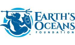 Earths Ocean Foundation 250 X 150