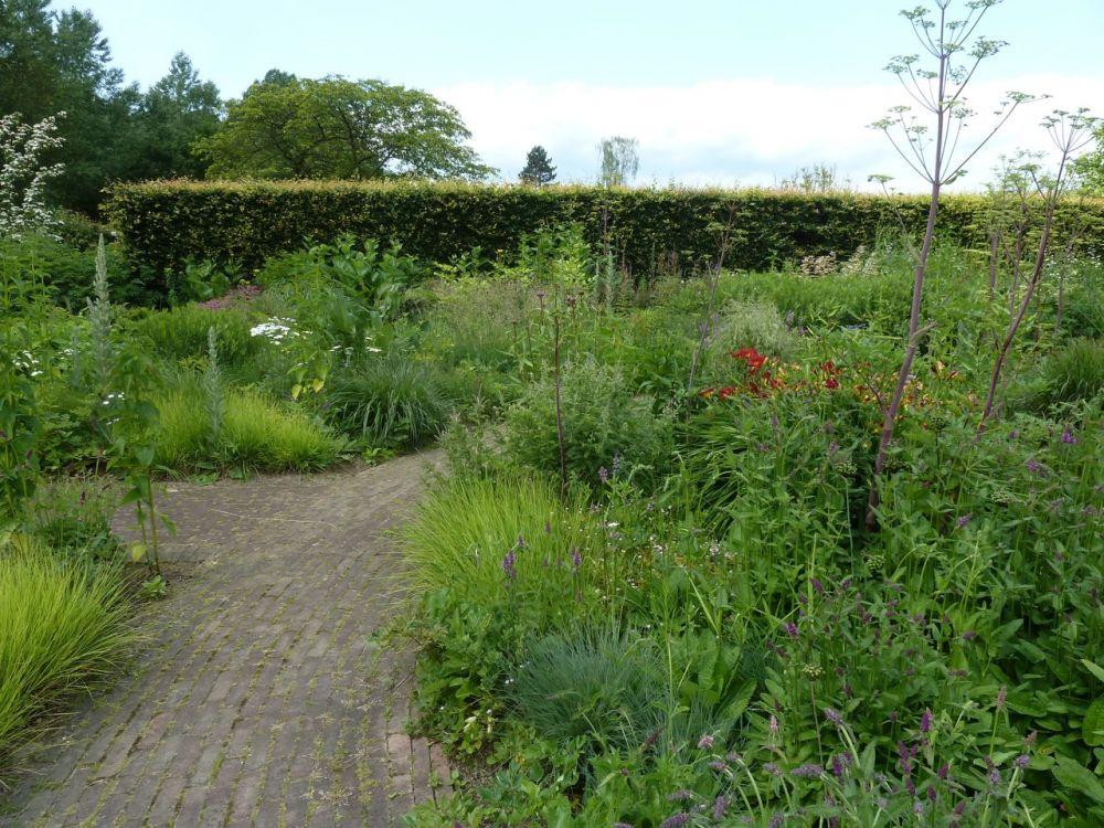 Oudolf's Gardening Inspiration (1/6)