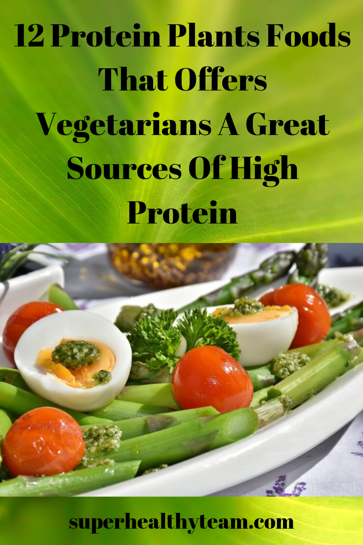 High Protein Plants Foods