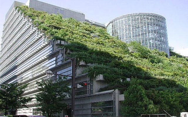 Green_Roof-640x400