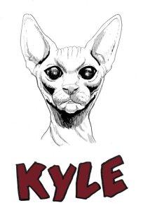 Kyle the Cat