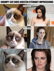 Grumpy Cat vs. Kristen Stewart