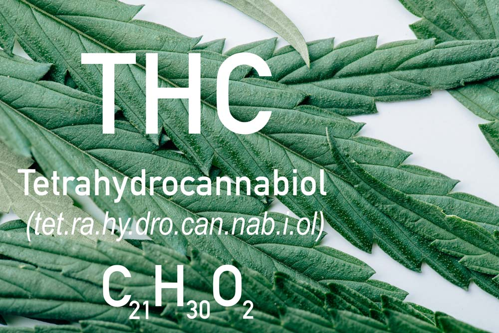 Identify-High-Quality-CBD-Products---THC-Levels