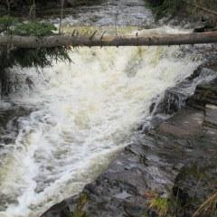 Cedar Falls Conservation Trail