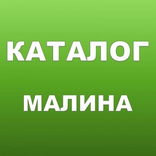 Саженцы ремонтантной малины купить в Минске ...