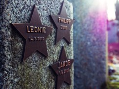 Mainzer Hauptfriedhof - Sternengarten