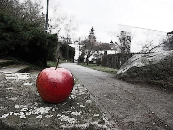 Apfel - Kunstprojekt – Anfang eines Hobbies (Teil 1/Fotoserie)