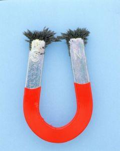 Ein Dauermagnet in Hufeisenform, auf dessen einem Pol ein S, auf dem anderen ein N steht und an denen sich an den Spitzen Eisenspäne gesammelt haben. der untere Teil ist rot.