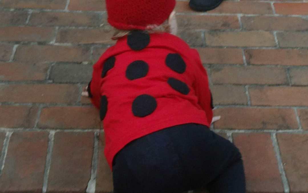 DIY Halloween Costumes: Cute Little Ladybug