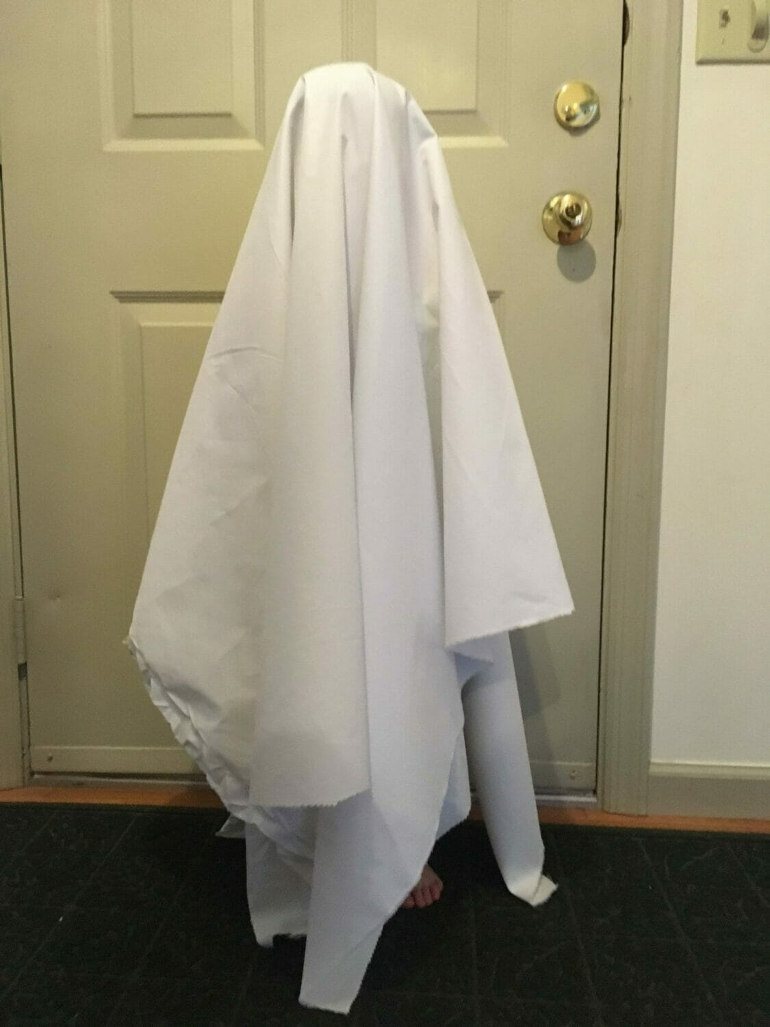 picture How to Make a Ghost Costume