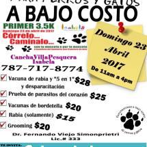 Vacunaciones para perros y gatos a bajo costo – Isabela