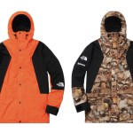 2016 AW The North Face × Supreme