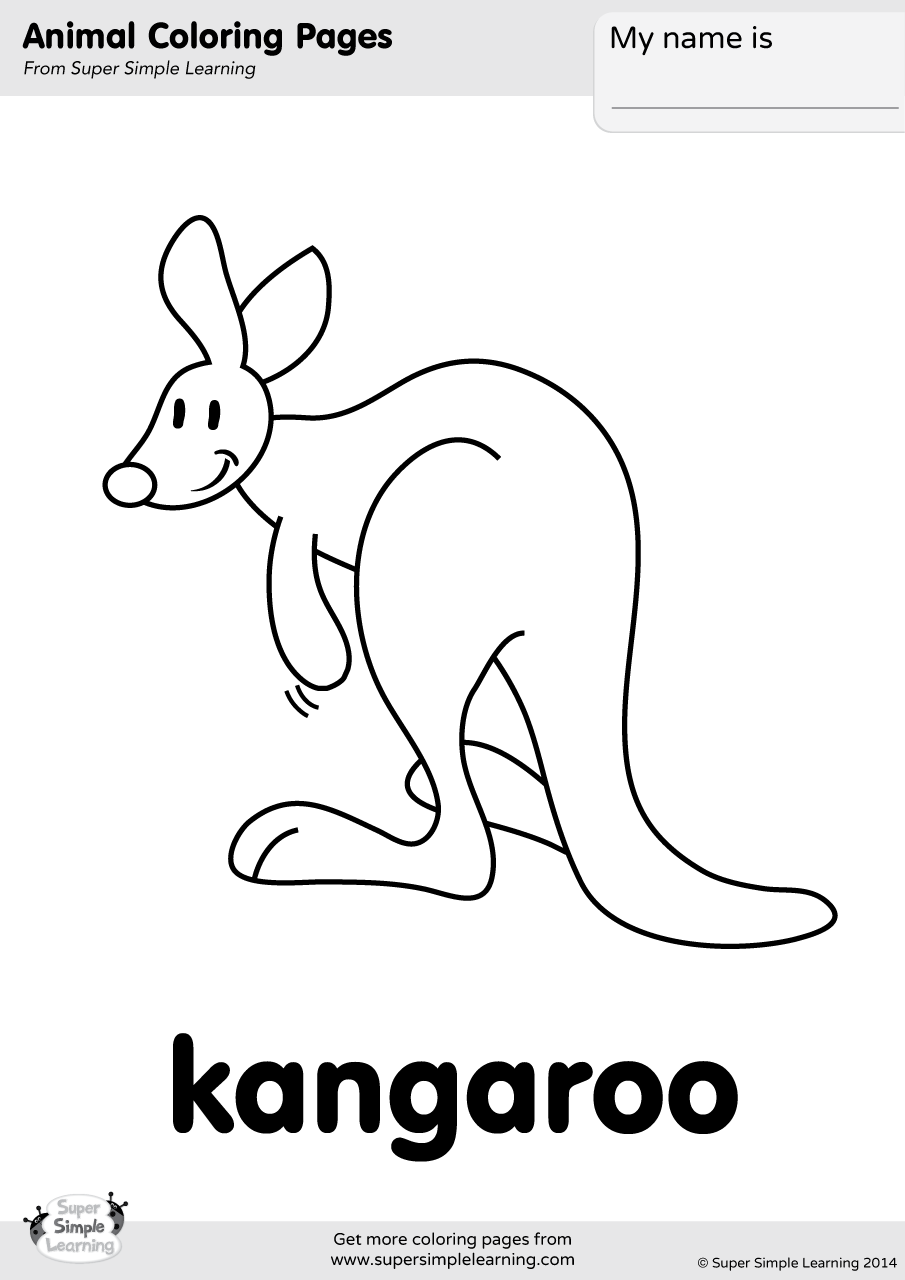 Kangaroo Coloring Page Super Simple