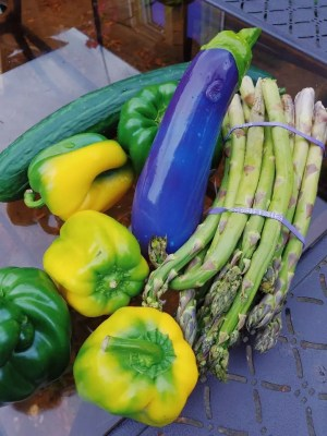 [Image: Self Delve Aubergine / Eggplant dildo among asparagus, bell peppers, and cucumber]