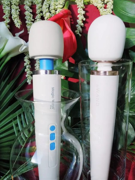 [Image: Magic Wand Plus and Le Wand Rechargeable side-by-side comparison. They look SUPER similar!]