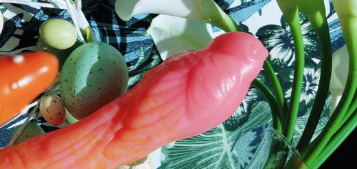 Silc Arts Sparrow Large bird-shaped artisan dildo review 29