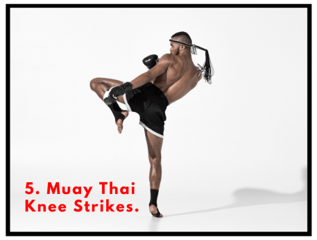 Muay Thai Knee strike. HIIT circuit. Core stability exercises. Kickboxing training.