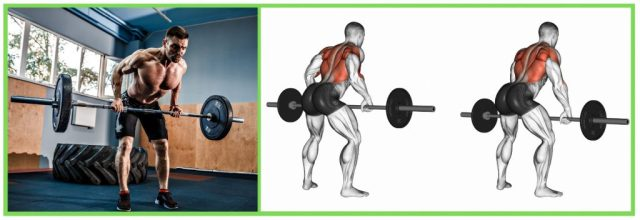 Barbell deadlifts. Resistance Training. Muscular strength. Full body workout.