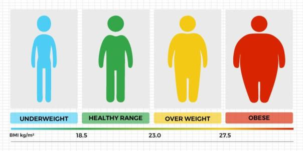 BMI. Body Mass Index. Cardiovascular fitness. Fat burning. Super Soldier Project.